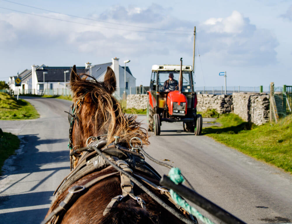 horse and cart inis oirr