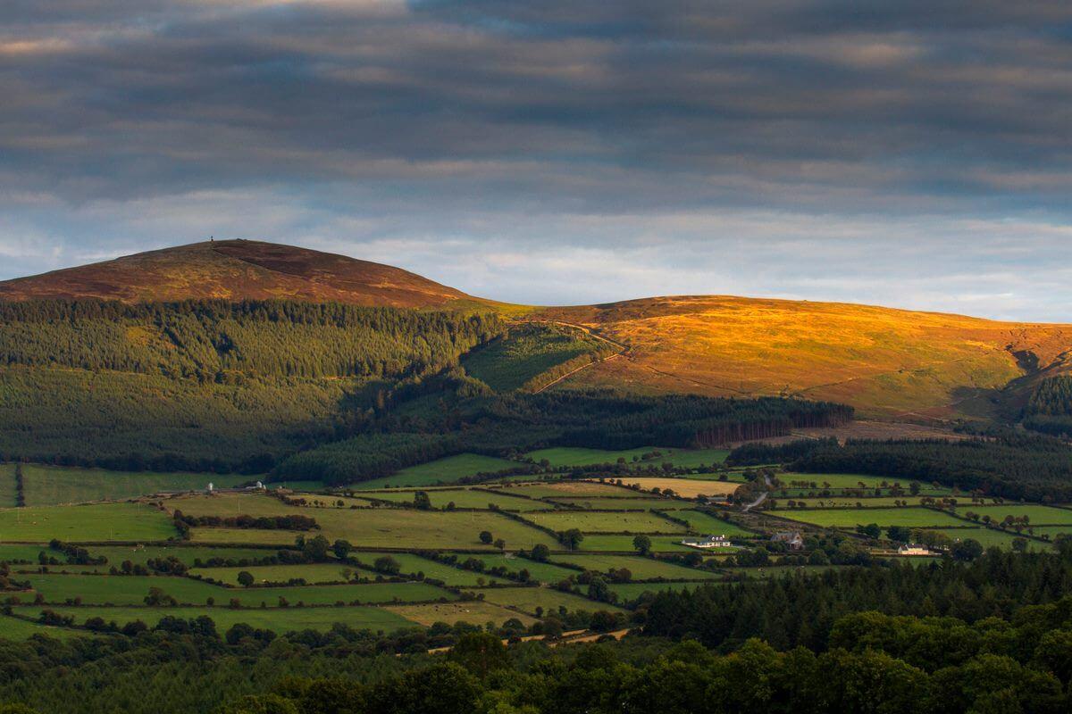 fields in kilkenny