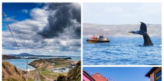 best things to do in west cork ireland