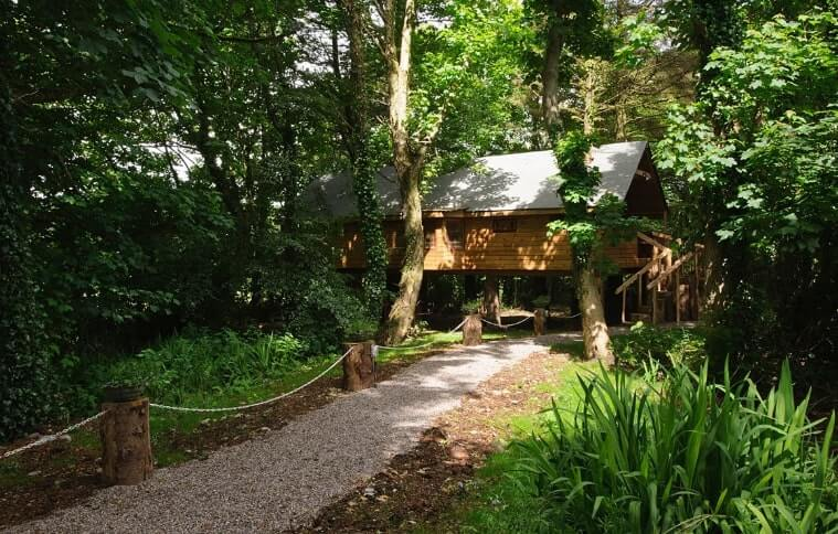 treehouse in cork