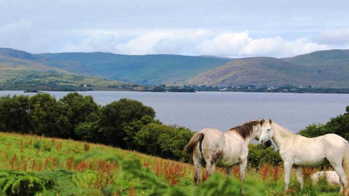 walk in connemara galway