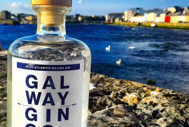 gin in galway city