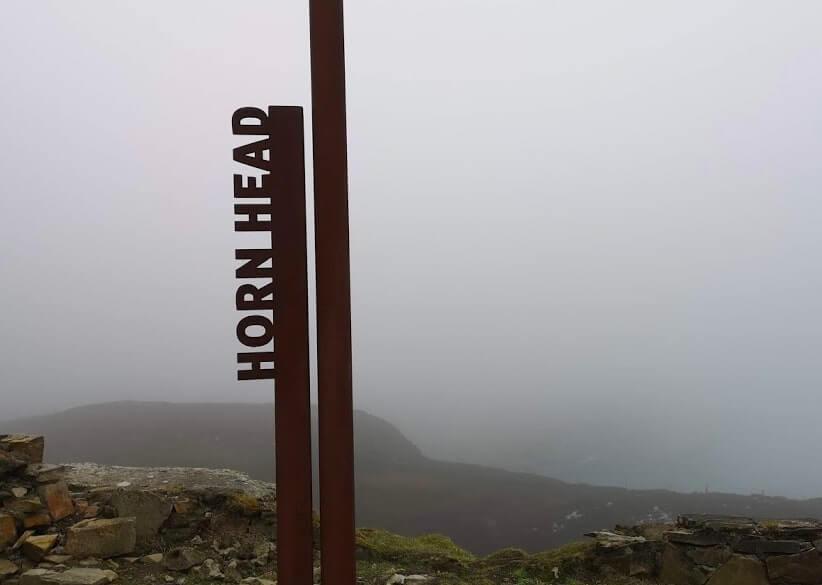 a misty horn head