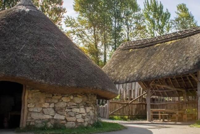 ringfort airbnb wexford