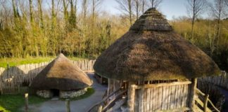 ringfort airbnb new