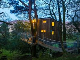 stay in a treehouse donegal