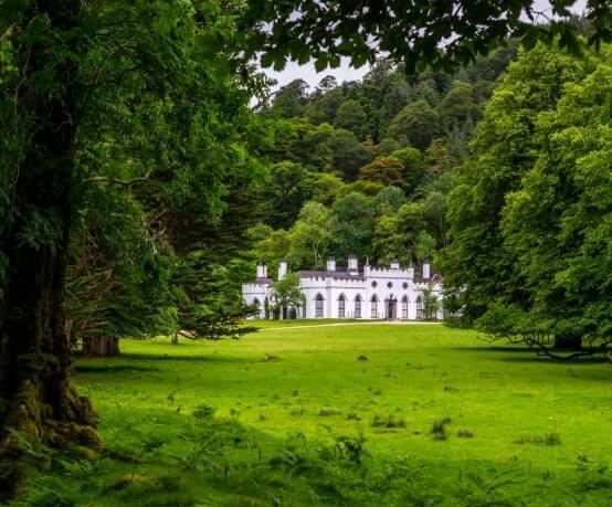 guinness estate
