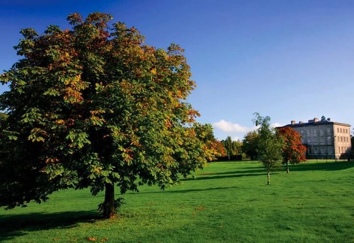 Palace Demesne Public Park Armagh