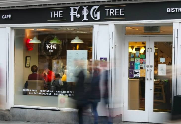 7 day Ireland itinerary eating at the fig tree kilkenny