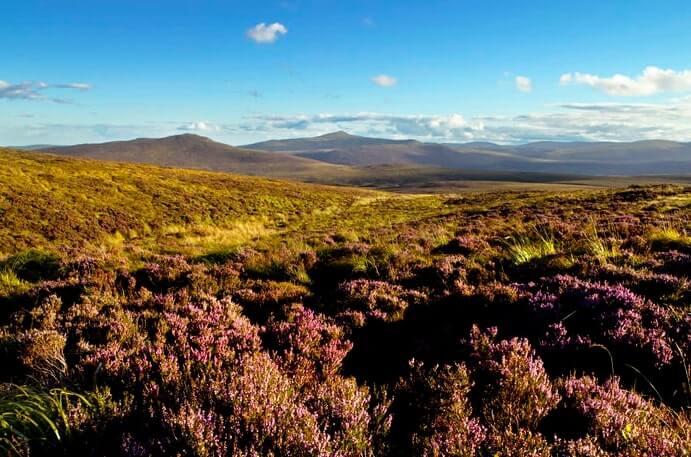 5 day Ireland tour route 2