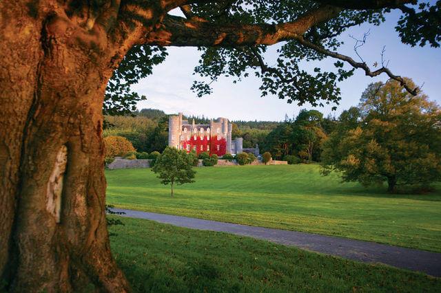 Castlewellan forest park