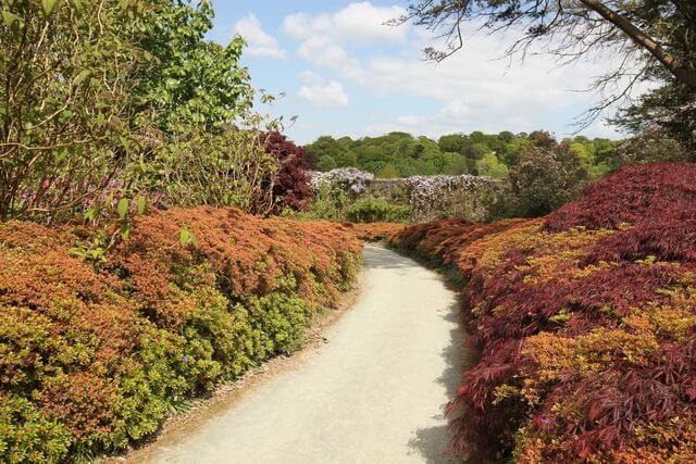 Mount Congreve Gardens Waterford