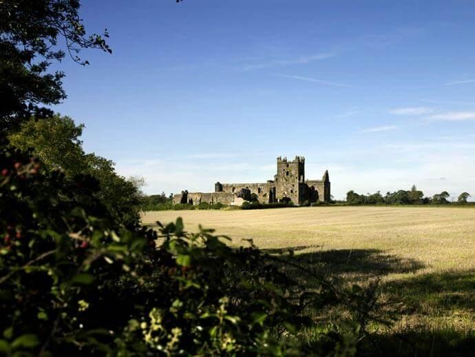 Dunbrody Abbey from afar