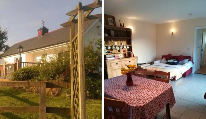 Cosy cottage with own alpaca Airbnb in Kinsale