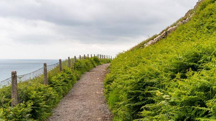 the cliff walks