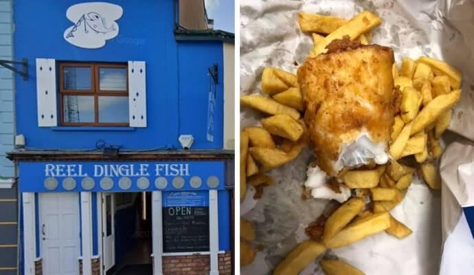 Reel Dingle Fish
