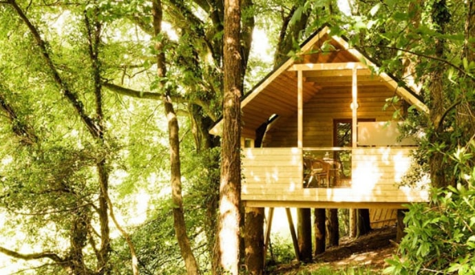 Photo of the exterior of Treehouse 3