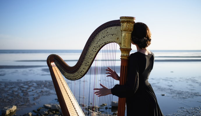 The Harp is one of the most popular Irish instruments