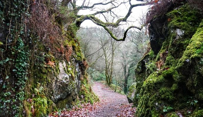walking trails in wicklow