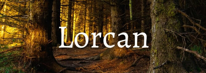Lorcan