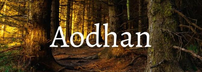Aodhan