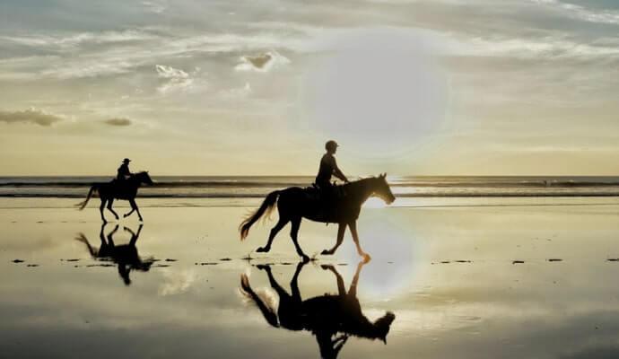 horses on Tullan Strand