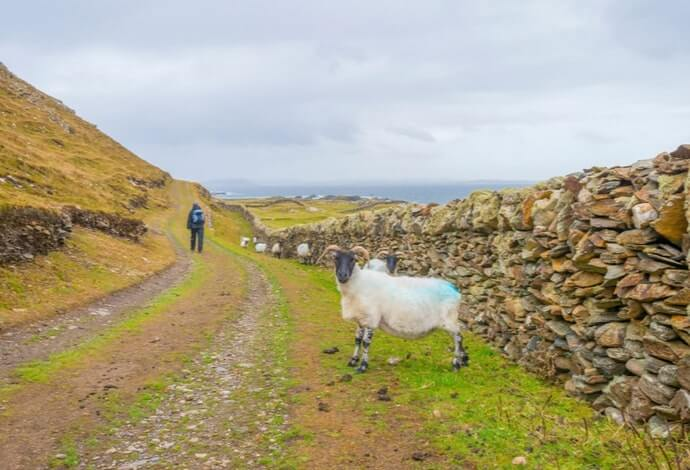 guide to inishbofin island