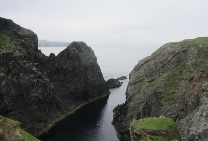 sea cliffs and seals