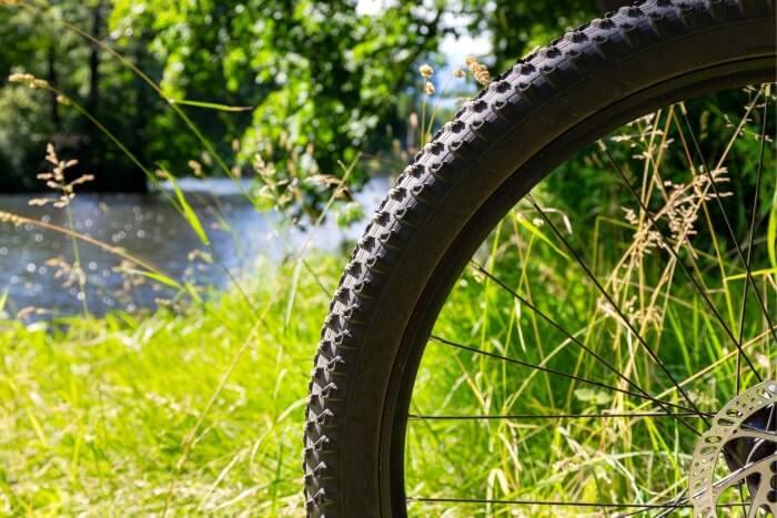 phoenix park bike rental
