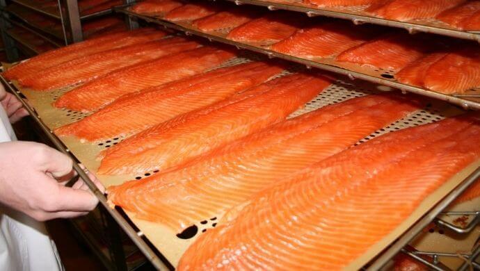 wild irish salmon