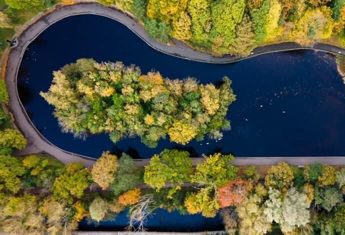 bushy park lake